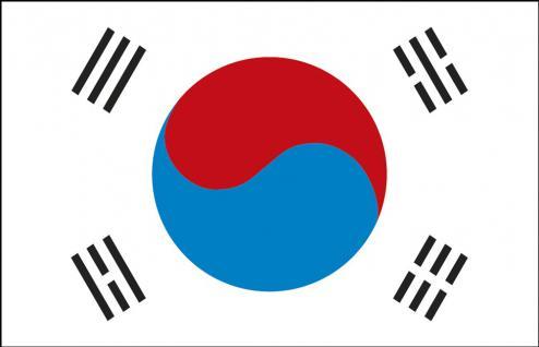 Schwenkfahne mit Holzstock - Südkorea - Gr. ca. 40x30cm - 77138 - Länderflagge, Fahne, Stockländerfahne