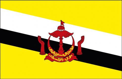 Auto-Flagge - Brunei - Gr. ca. 40x30cm - 78031 - Länderflagge mit Klemmstab, Fahne, Autoländerfahne