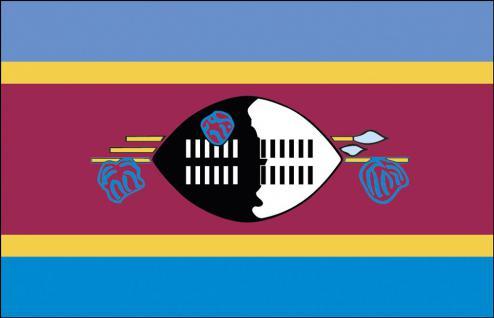Stockländerfahne - Swasiland - Gr. ca. 40x30cm - 77161 - Schwenkfahne mit Holzstock, Flagge