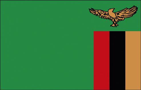 Länderfahne - Sambia - Gr. ca. 40x30cm - 77140 - Flagge mit Holzstock, Stockländerfahne