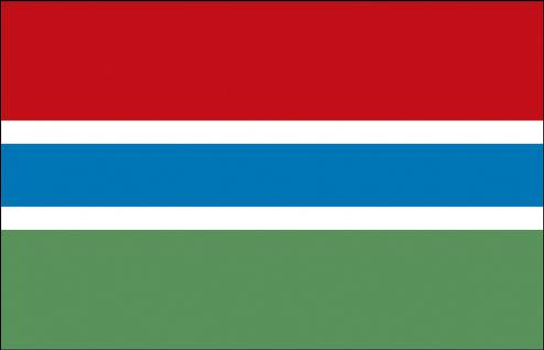 Stockländerfahne - Gambia - Gr. ca. 40x30cm - 77053 - Länderfahne Schwenkfahne