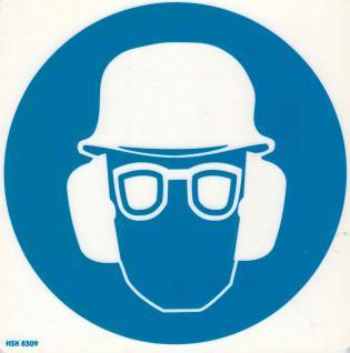 Hinweisschild - Schutzbrille - Gr. ca. 20 X 20 cm - 308309