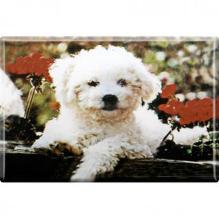 Kühlschrankmagnet - Hunde Welpe - Gr. ca. 8 x 5, 5 cm - 38443 - Magnet Küchenmagnet