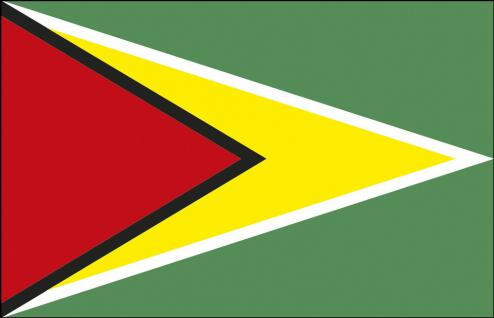 Stockländerfahne - Guyana - Gr. ca. 40x30cm - 77061 - Schwenkfahne Länder Flagge