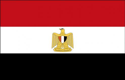 Deko-Länderflagge - Ägypten - Gr. ca. 150x90 cm - 80001 - Trendflagge, Länderfahne