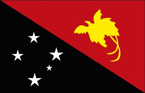 Schwenkfahne mit Holzstock - Papua-Neuguinea - Gr. ca. 40x30cm - 77127 - Flagge, Stockländerfahne