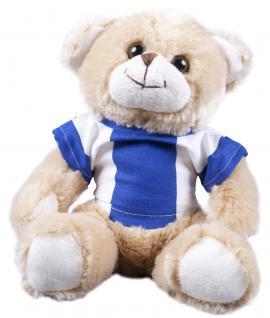 Plüsch - Teddybär mit Shirt blau weiß - 27139