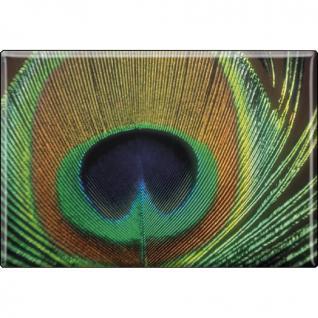Kühlschrankmagnet - Vogel Pfauenauge - Gr. ca. 8 x 5, 5 cm - 37264 - Magnet Küchenmagnet