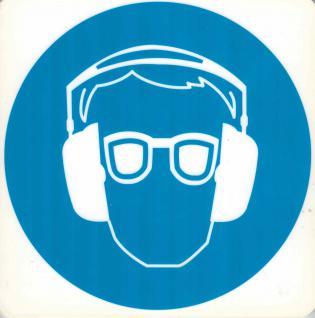 Hinweis- Schild - Schutzbrille und Hörschutz - Gr. 20 X 20 cm - 308308