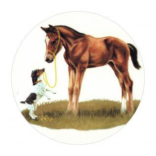 Aufkleber Sticker 9 cm rund Herde in Bewegung ©Kollektion Boetzel Pferde PF060