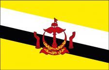 Stockländerfahne - Brunei - Gr. ca. 40x30cm - 77031 - Schwenkflagge