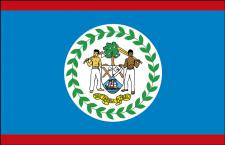 Stockländerfahne - Belize - Gr. ca. 40x30cm - 77024 - Länderflagge Hissfahne