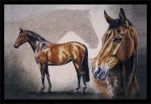 Fußmatte mit Pferdemotiv - RISING SUNSHINE - 25001 - Gr. ca. 60x40cm - Schmutzfänger