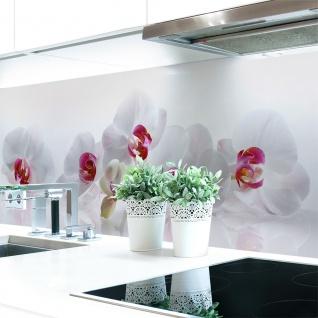Küchenrückwand Orchidee Premium Hart-PVC 0, 4 mm selbstklebend - Direkt auf die Fliesen