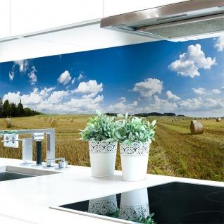 Küchenrückwand Feld Premium Hart-PVC 0, 4 mm selbstklebend - Direkt auf die Fliesen