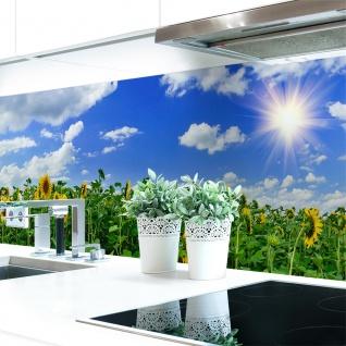Küchenrückwand Sonnenblume Premium Hart-PVC 0, 4 mm selbstklebend - Direkt auf die Fliesen