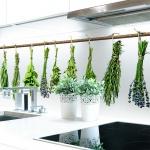 Küchenrückwand Kräuter Büschel Premium Hart-PVC 0, 4 mm selbstklebend - Direkt auf die Fliesen