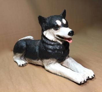 Hunde Figur Husky HUND L50 x T20x H25 Lebensecht Tierfigur Deko ITALY Skulptur