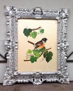 Bild mit Rahmen gold weiß Blumen Vogel Tiere 45x38cm Kunstdruck Bild Wandbild