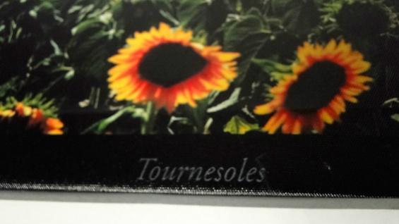 Bilder Leinwand Keilrahmen Bild Canvas Bilder Sonnen-blumen 40x120 Sunflower - Vorschau 2