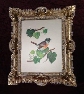 Bild mit Rahmen Gold-Weiß Gemälde Vogel Wandbild 45x38 Vogel Weintrauben blätter
