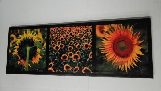 Bilder Leinwand Keilrahmen Bild Canvas Bilder Blumen Sonnenblumen 31x86sunflower - Vorschau 4