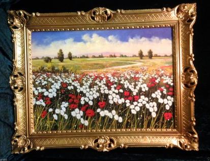 Blumen Mohn Blume Kamille Blume Minenfeld Gerahmte Gemälde 90x70 Landschaftsbild