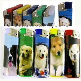 50 x Feuerzeuge Hund Motiv bunt nachfüllbare lighter wiederauffüllbar NEU