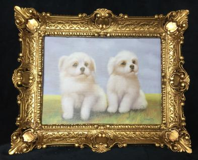Bild Malteser Hund weiße Hunde Wandbild & Rahmen 57x47 Gemälde Wanddeko gold T9