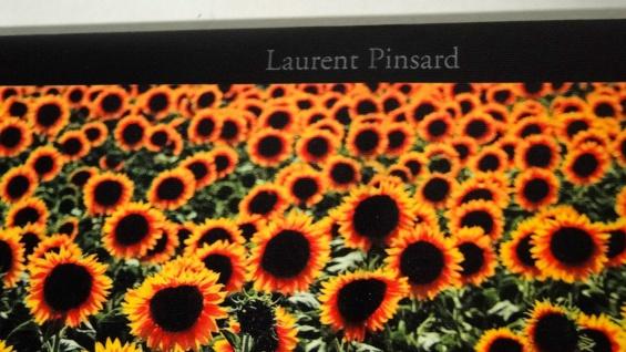 Bilder Leinwand Keilrahmen Bild Canvas Bilder Sonnen-blumen 40x120 Sunflower - Vorschau 3