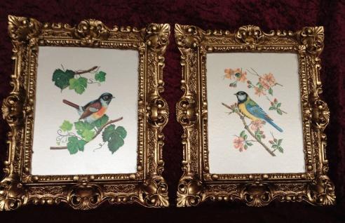 2x Vogel Bild Rahmen Gold Gemälde Vogel Wandbild 45x38 Paradies Vogel Blumen
