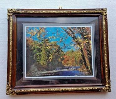 Bild mit Rahmen Landschaftsbild Fluss Wald Holzoptik Braun 31x26cm Barock Rahmen