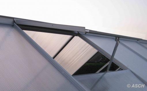 7, 05m² ALU Aluminium Gewächshaus Glashaus Tomatenhaus, 6mm Hohlkammerstegplatten - (Platten MADE IN AUSTRIA/EU) mit Stahlfundament und 2 Fenster - Vorschau 5