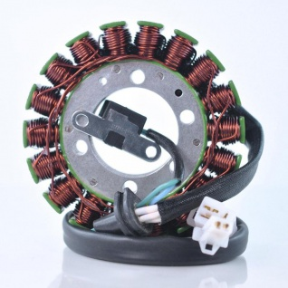 RM01562 Generator Stator Yamaha YZF 600 R 95-07 4JH-81410-00-00 4TV-81410-00-00 4TV-81410-01-00