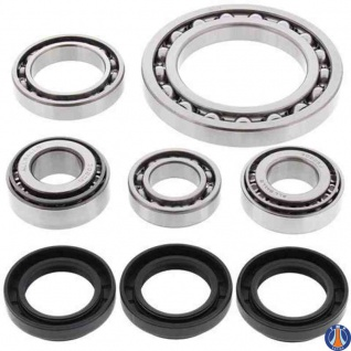 Differential Bearing and Seal Kit Front Arctic Cat 250 4x4 01-02, 300 4x4 98-01, 400 4x4 98-00, 400 4x4 w/MT 01, 454 4x4 96-98, 500 4x4 98-99, 500 4x4 w/AT 00-01, 500 4x4 w/MT 00-01, Suzuki LT-4WD 250 Quad Runner 87-98, LT-A500F Quad Master Auto 00-01, LT