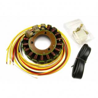 Lichtmaschine G83 Generator Kawasaki KR-1S (250) OEM 21003-1188 21003-1210