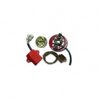 STK-445D Digital Stator kit for 2 cylinder/2 stroke motorcycles Yamaha TZ350