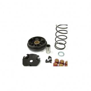 Speed Variator / Vario Tunning Agrale Aprillia Beneli Beta Malaguti MBK Yamaha