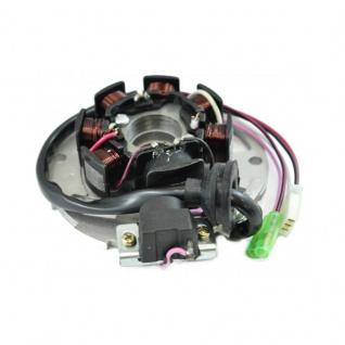 Stator E-Ton AXL Lightning DXL Sierra RXL Viper TXL Thunder Polaris Predator Scrambler Sportsman 00-07 OEM 01-ETON-50-70-90 AP8212701 0450202 1202045A3 1341285