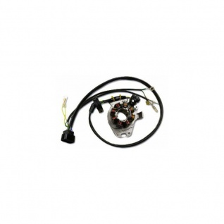 out Lichtmaschine ST1299L Combined Lighting/Ignition Stator Honda CR250 (99-01)