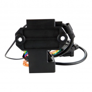 CDI Box Calibration Module for 1-Cyl for Ski-Doo RER Skandic Freestyle 300 300F 06-09 Tundra R 98-05