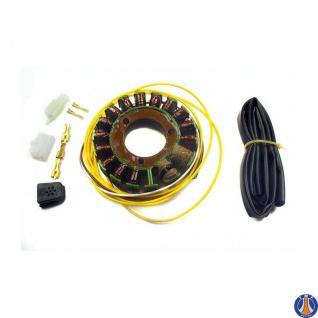 Lichtmaschine Generator Suzuki DR 250 S SE DR350 S SE 32101-14D00 32101-14D10 32101-14D40 32101-15D01