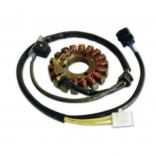 Lichtmaschine G318 Generator Suzuki DRZ400 DR400S Kawasaki KLX 400 R SR 21003-S007 32101-29F10 32101-29F00