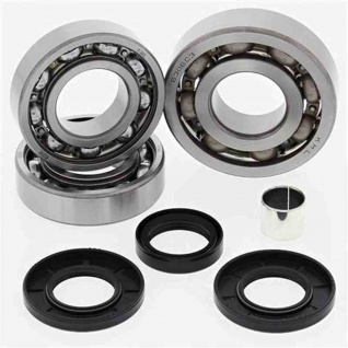 Differential Bearing and Seal Kit Front Polaris ATV 500 Pro 02, Magnum 325 4x4 HDS 02, Magnum 325 4x4 HDS AA 01, Magnum 325 4x4 HDS FB 01, Magnum 500 4x4 HDS 03, Magnum 500 4x4 HDS AA 01-02, Magnum 500 4x4 HDS FB 01, PTV Series 10 4x4 03