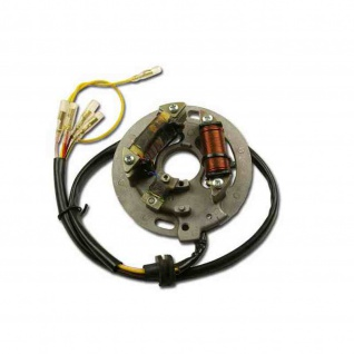Lichtmaschine Lighting and Ignition Stator Kawasaki KX 400 KX 500 (1984-1985) (C30/C31)