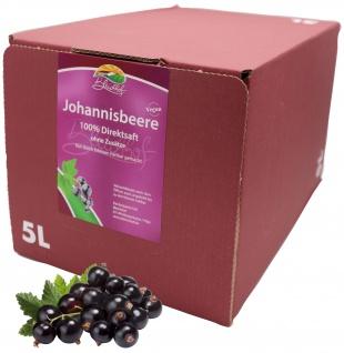 Bleichhof Schwarzer Johannisbeersaft - 100% Direktsaft, Bag-in-Box (1x 5l)