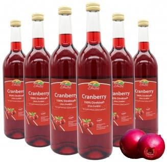 Bleichhof Cranberry-Saft - 100% Direktsaft, vegan, OHNE Zuckerzusatz (6x 0, 72l)