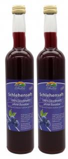 Bleichhof Raritäten-Mixkarton - Erdbeer-, Rhabarber-, 2x Schlehen-, 2x Himbeer-, Sanddorn-, Blaubeer-Direktsaft (8er Pack) - Vorschau 4