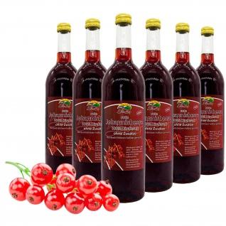Bleichhof Roter Johannisbeersaft - 100% Direktsaft, 6er Pack (6x 0, 72l)