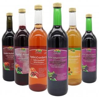 Bleichhof Apfelmischsäfte mit Beeren Probepaket-Apfel-Sanddornsaft, Apfel-Aroniasaft, Apfel-Cranberrysaft, 2x Apfel-Johannisbeersaft, Apfel-Holundersaft(6x0, 72L)
